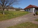 Fruehling in KrottelbachJG_UPLOAD_IMAGENAME_SEPARATOR14