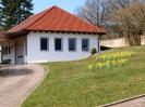 Fruehling in KrottelbachJG_UPLOAD_IMAGENAME_SEPARATOR20