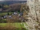 Fruehling in KrottelbachJG_UPLOAD_IMAGENAME_SEPARATOR38
