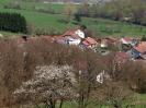 Fruehling in KrottelbachJG_UPLOAD_IMAGENAME_SEPARATOR45