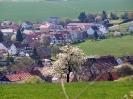 Frühling 2015 in Krottelbach