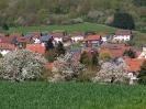 Fruehling in KrottelbachJG_UPLOAD_IMAGENAME_SEPARATOR58