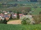 Fruehling in KrottelbachJG_UPLOAD_IMAGENAME_SEPARATOR61