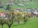 Fruehling in KrottelbachJG_UPLOAD_IMAGENAME_SEPARATOR64